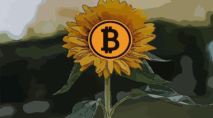 Apa Yang Akan Terjadi pada Bitcoin Jika Powell Memotong Suku Bunga?