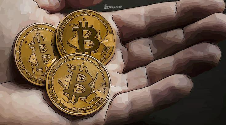 Cara Melakukan Holding Aset Crypto Yang Benar, Agar Segera Mendapatkan Profit