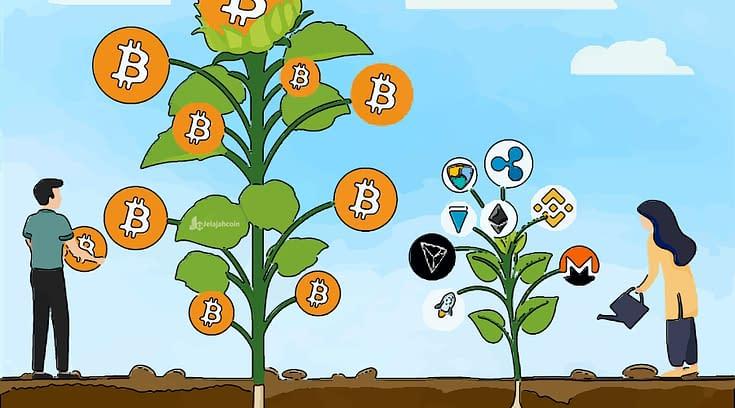 Awas Nyasar, Ini Hal Yang Harus Kamu Ketahui Sebelum Investasi Crypto