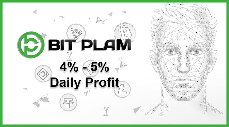 Hasilkan ROI Investasi Sampai Dengan 300% Bersama Bit Plam